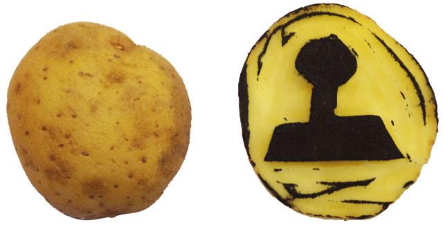 Kartoffel  - Stempel
