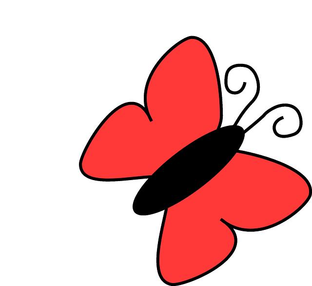 Schmetterling; Bildquelle: http://pixabay.com