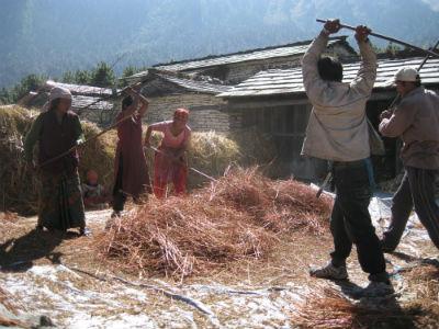 Bauern in Nepal